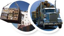 Cargo et camion